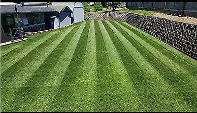 lawn striping system